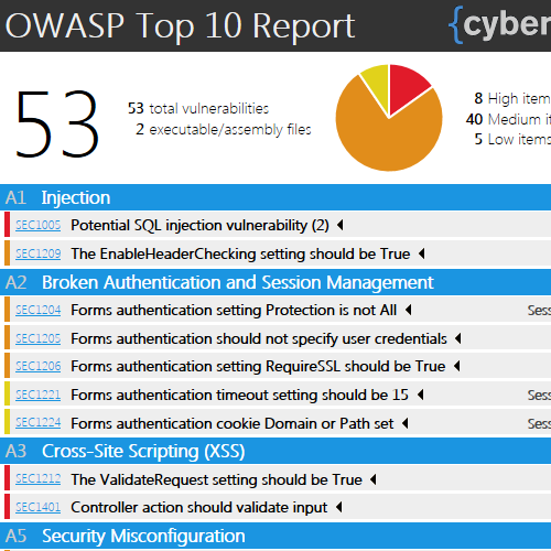 OWASP Top 10 Report